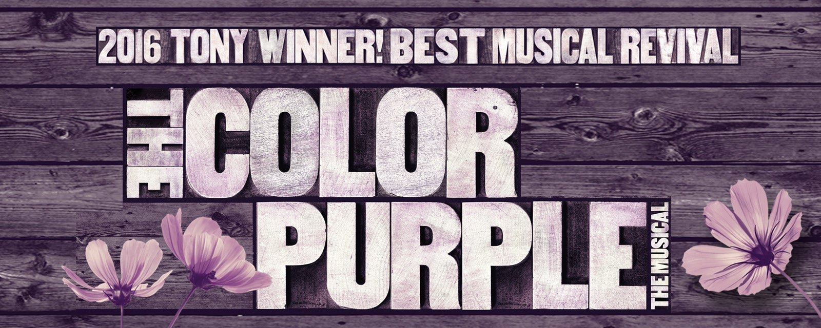 the color purpler A short summary of alice walker's the color purple this free synopsis covers all the crucial plot points of the color purple.